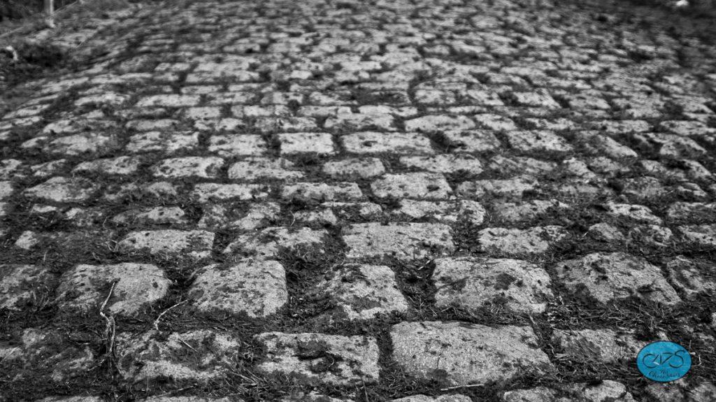 The famous cobbles of the Koppenberg.